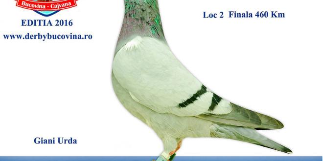 loc-2-finala