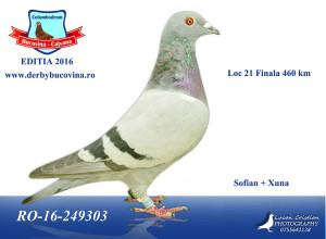 loc-21-derby
