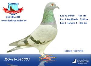 loc-32-derby