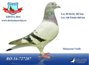 loc-40-derby